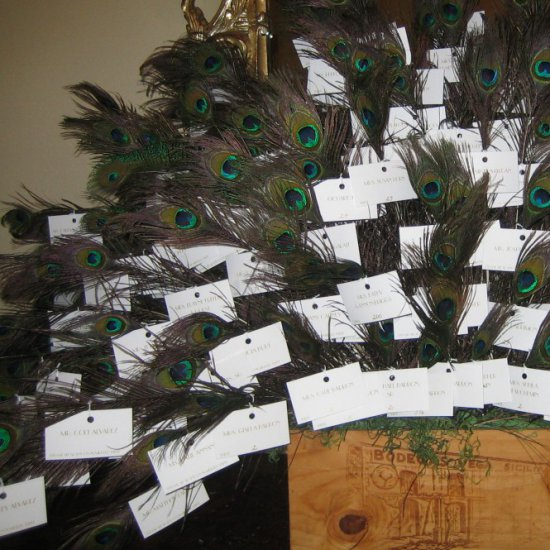 How to seat your guests and give each guest a special keepsake, a peacock feather.
