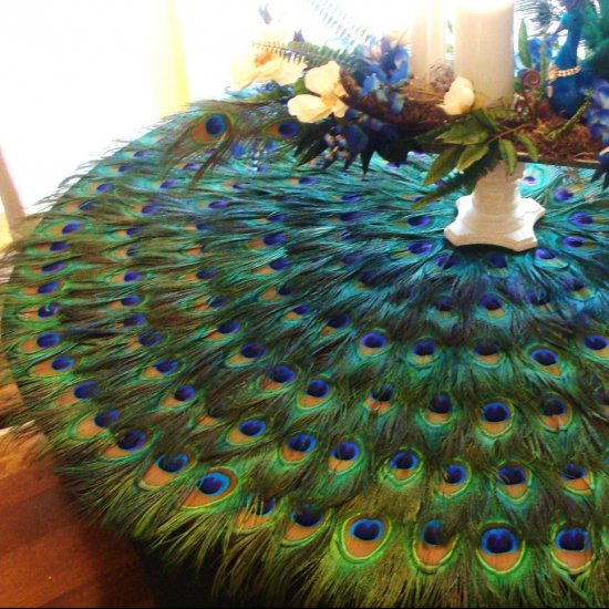 Tired of the same old linnen tablecloth? Be original, use peacock feathers instead!